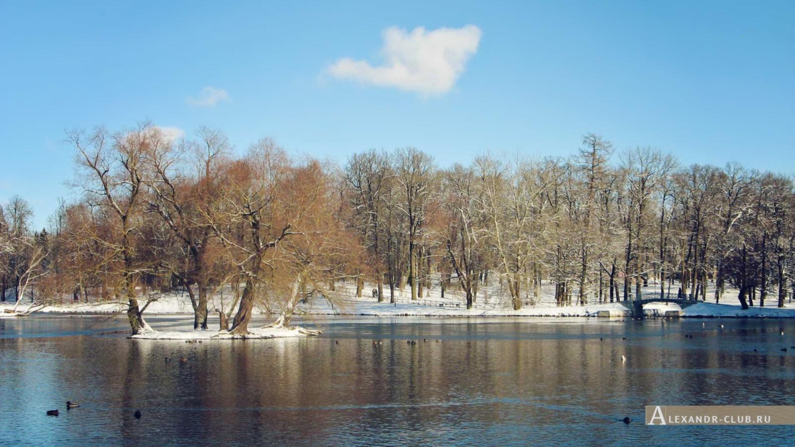 . Белое озеро с Карпина моста, Гатчинский парк