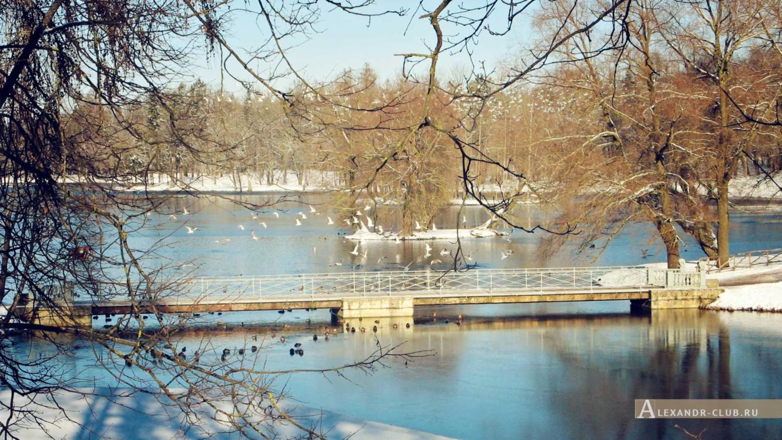 Мостик между Белым и Черным озером, Гатчинский парк