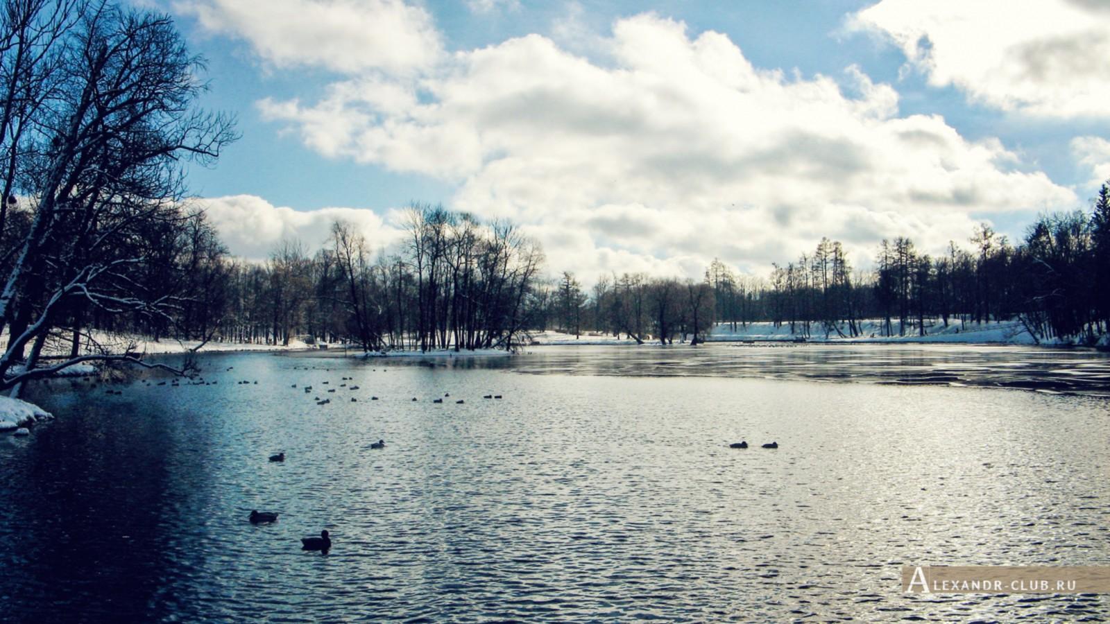 Белое озеро, Гатчинский парк