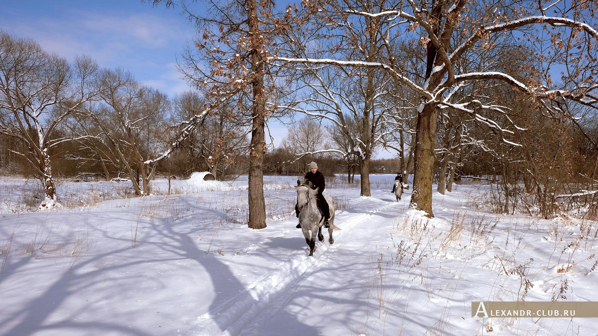 Петергоф, Луговой парк, зима, аллея у реки Шинкарка – 1