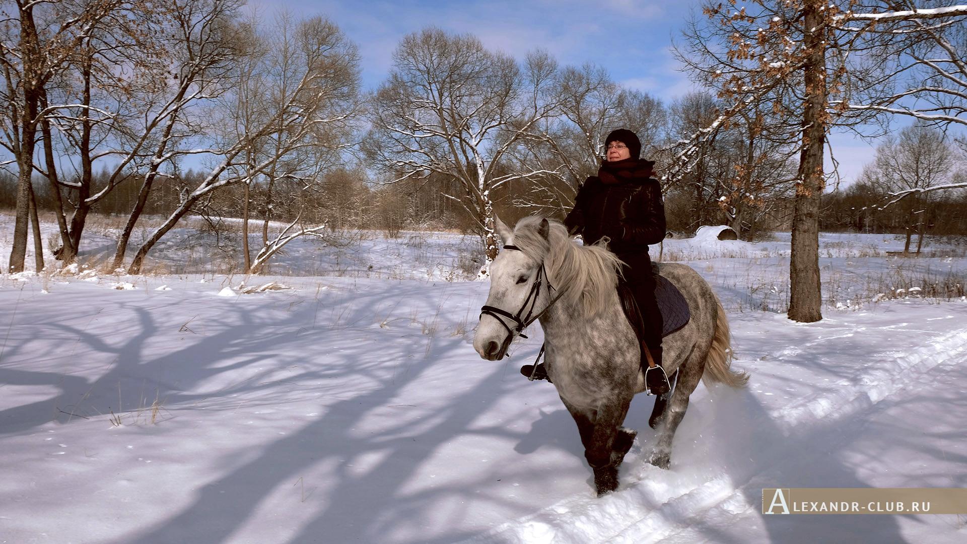 Петергоф, Луговой парк, зима, аллея у реки Шинкарка – 2