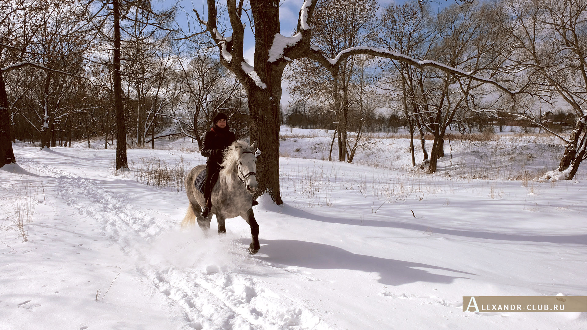 Петергоф, Луговой парк, зима, аллея у реки Шинкарка – 3