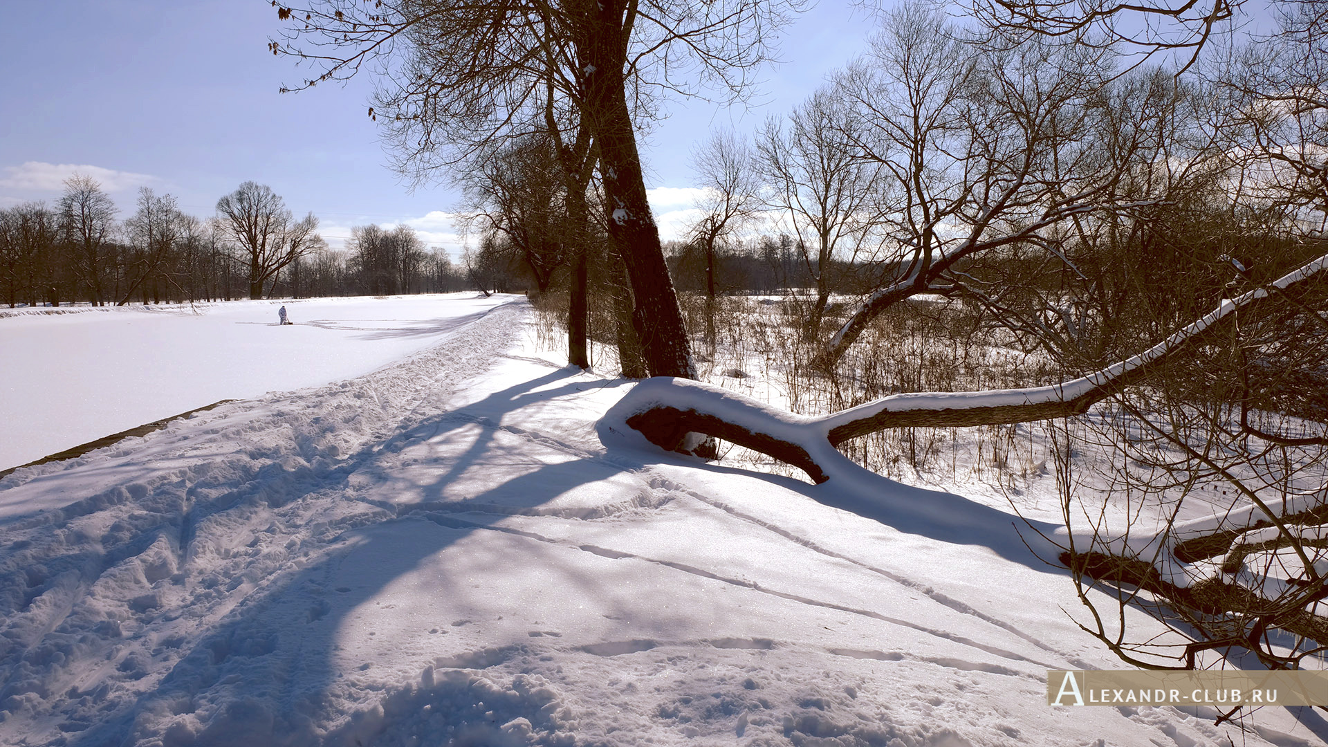 Петергоф, Луговой парк, зима, Старопетергофский канал