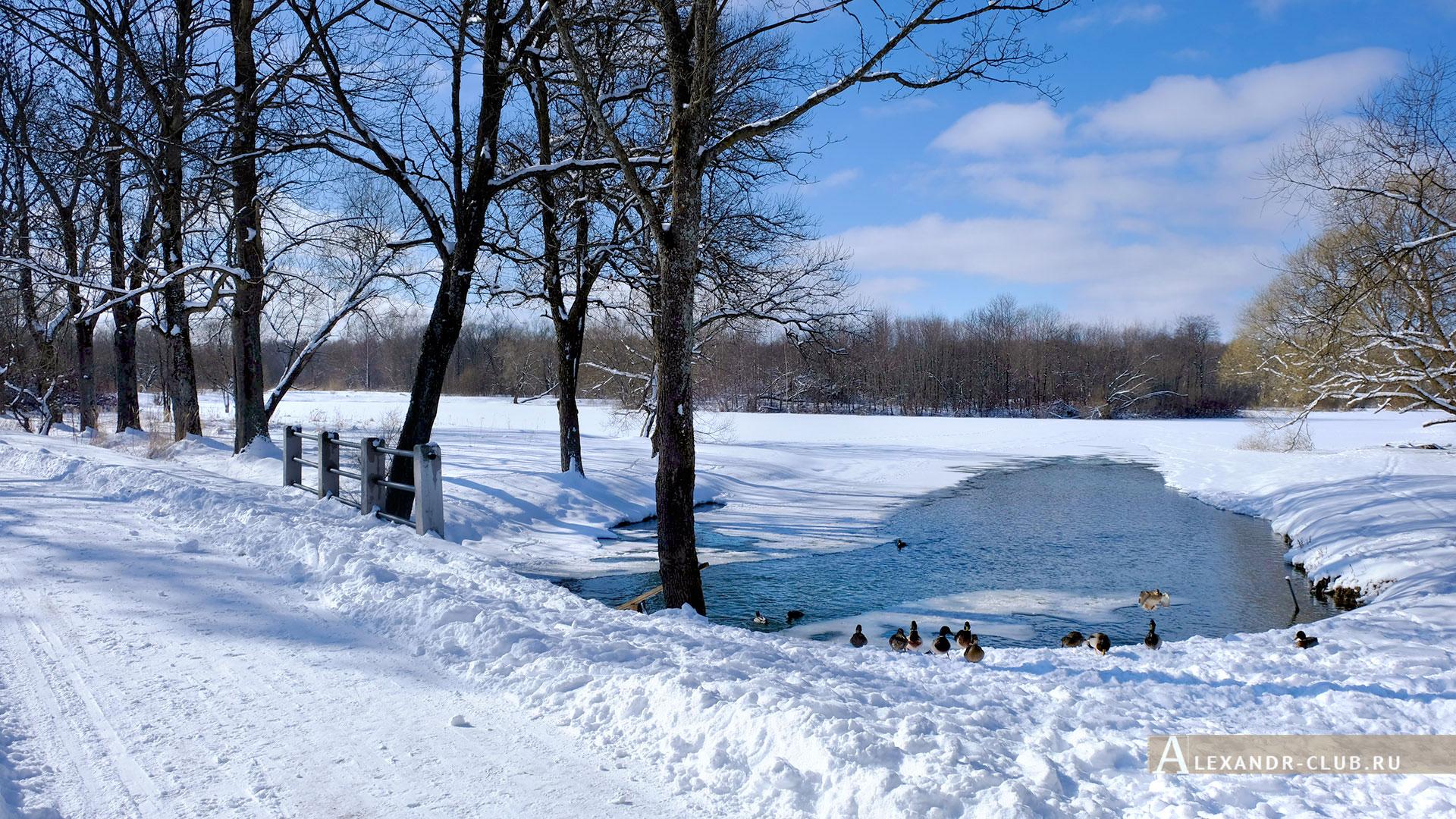 Петергоф, Луговой парк, зима, Орлинский пруд – 3