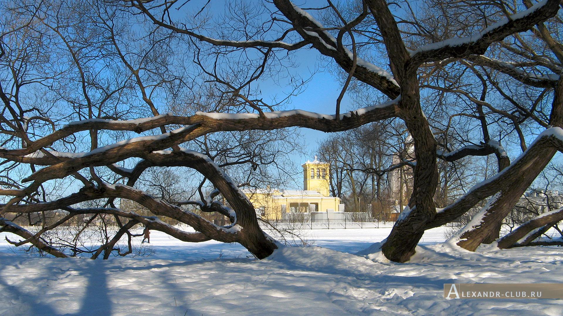 Петергоф, Колонистский парк, зима, Царицын павильон – 4