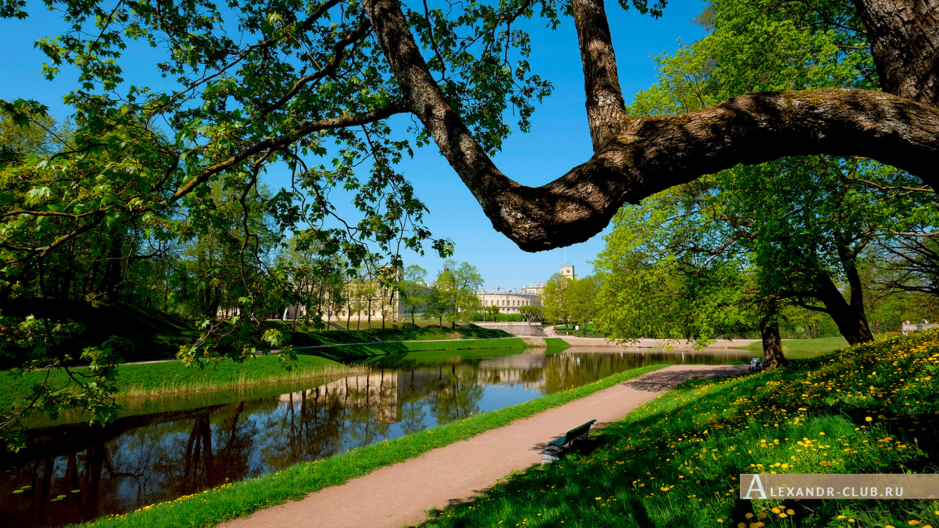 Гатчинский парк, весна, Гатчинский дворец