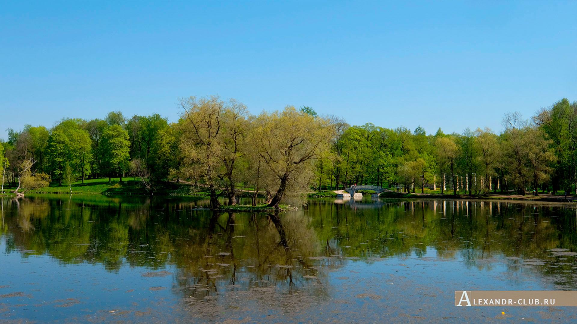 Гатчинский парк, весна, Белое озеро