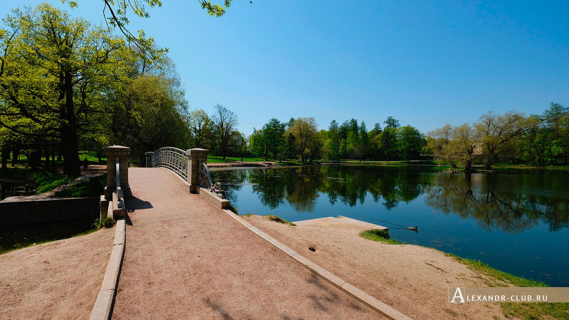 Гатчинский парк, весна, мостик напротив Адмиралтейства