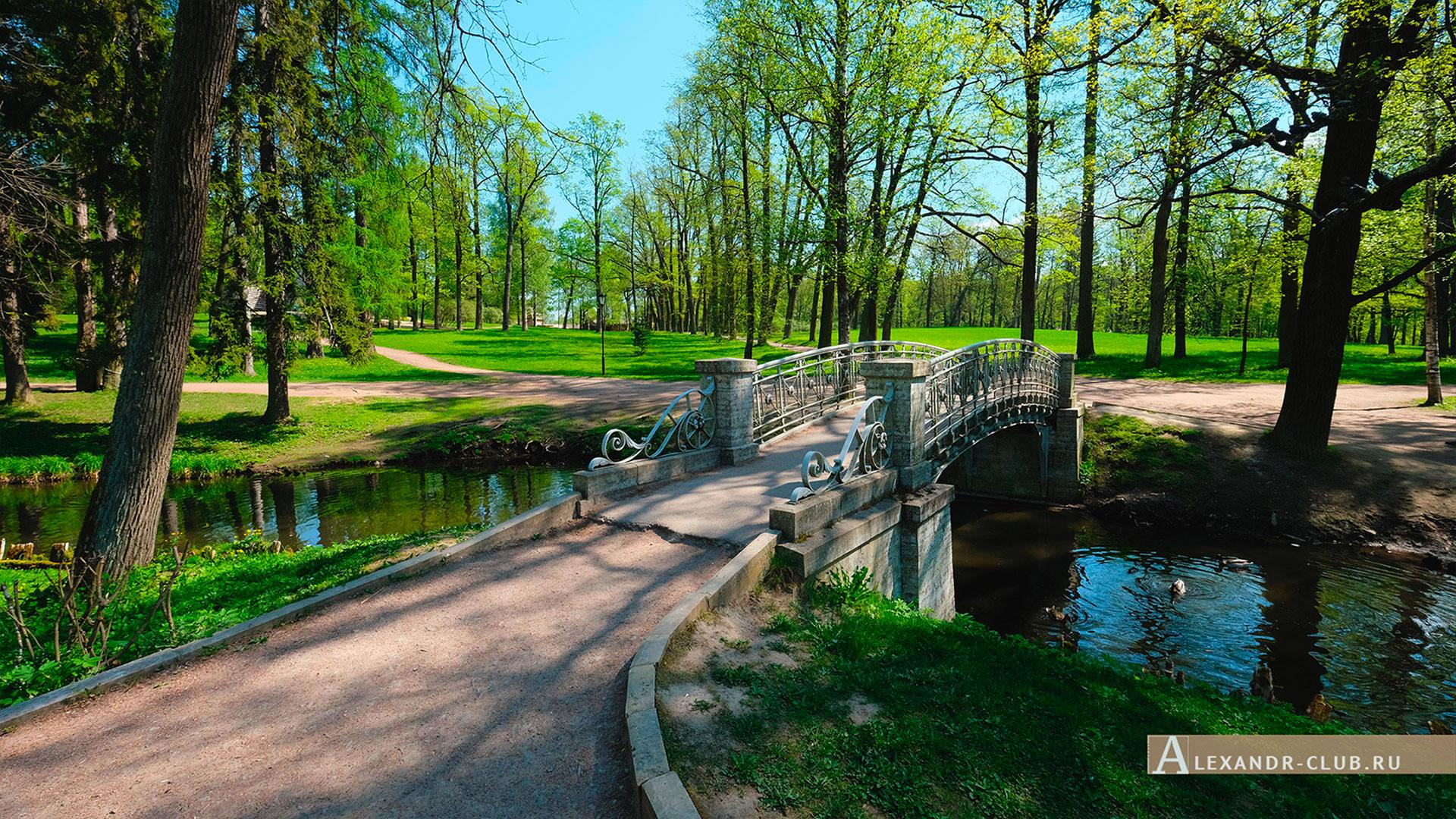Гатчинский парк, весна, мостик и канал у павильона Венеры
