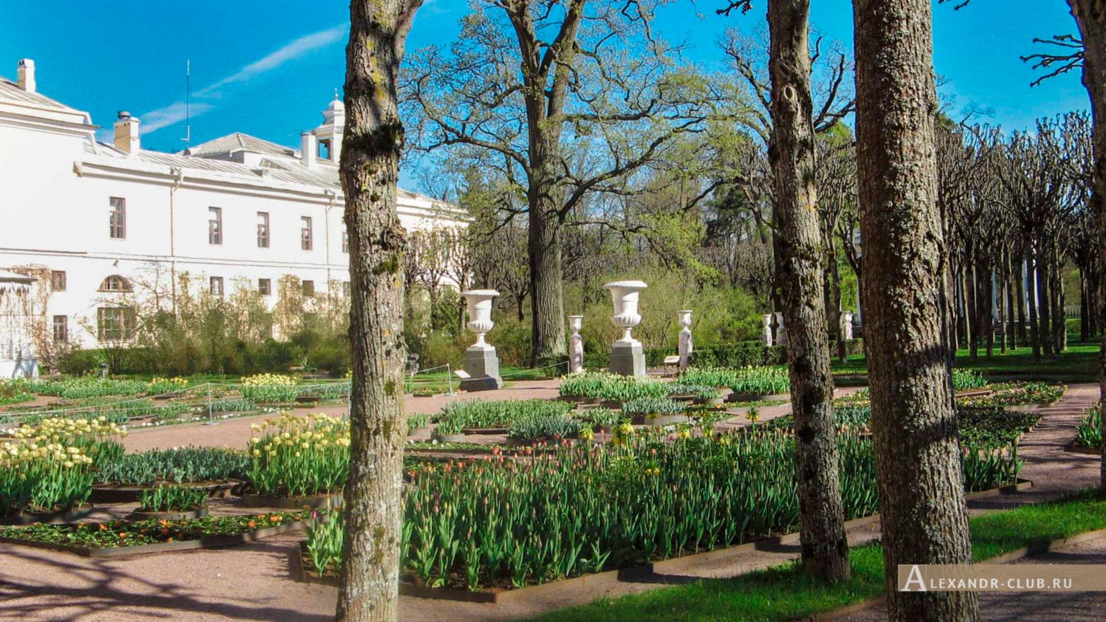 Павловский дворец, весна, Собственный садик
