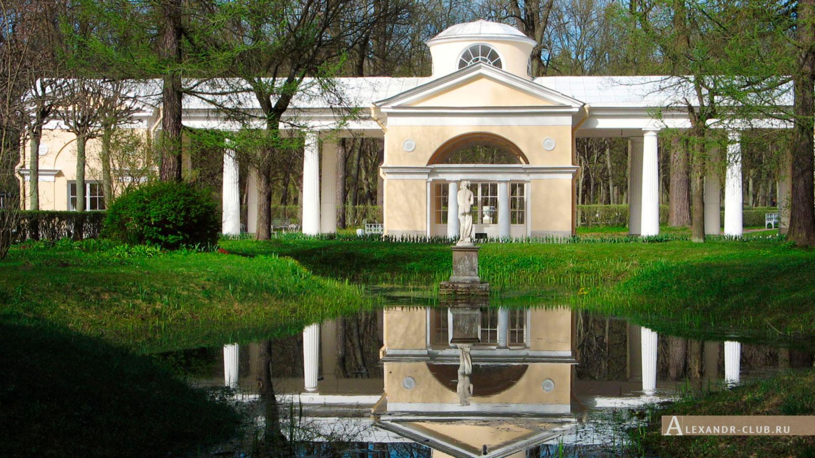 Павловский парк, весна, Вольер и статуя Венеры Италийской – 2