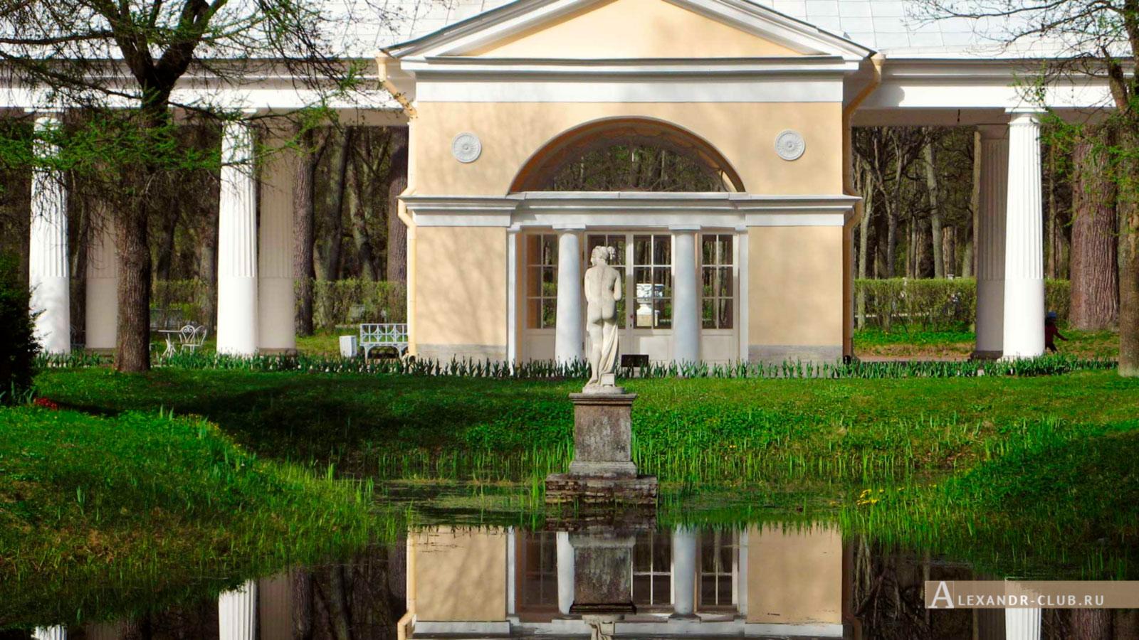 Павловский парк, весна, Вольер и статуя Венеры Италийской – 3