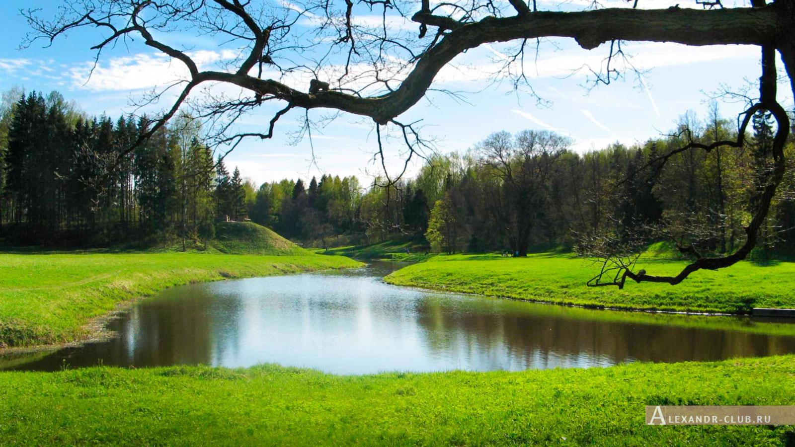 Павловский парк, весна, вид на р. Славянку