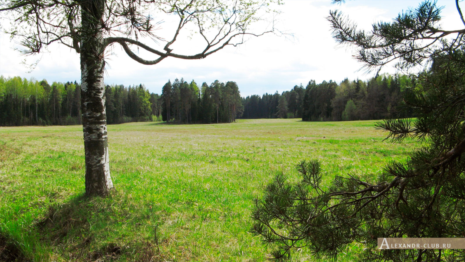 Павловский парк, весна, «Самое красивое место» – 1