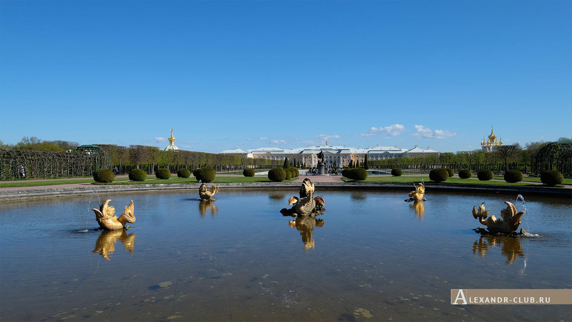 Петергоф, весна, Верхний сад, фонтан «Межеумный»