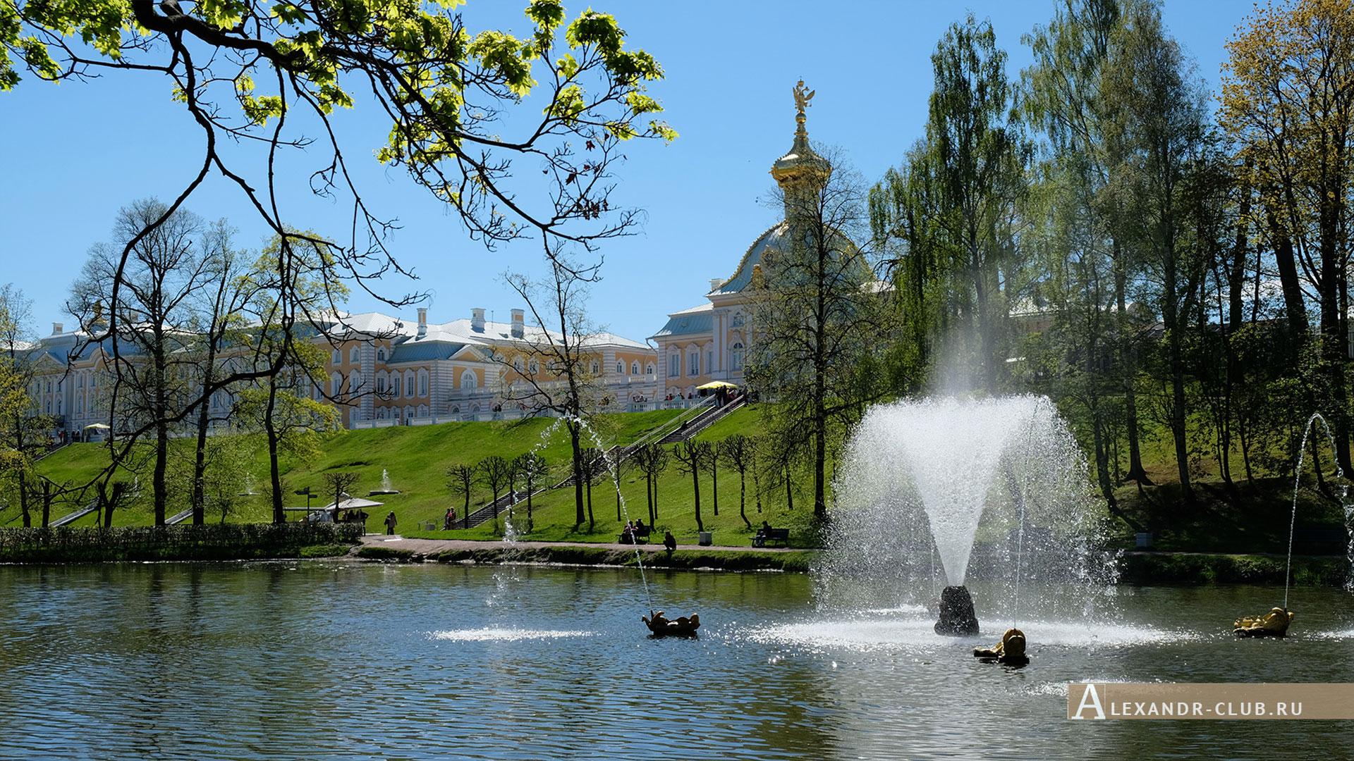 Петергоф, весна, Нижний парк, фонтан «Китовый», Особая кладовая