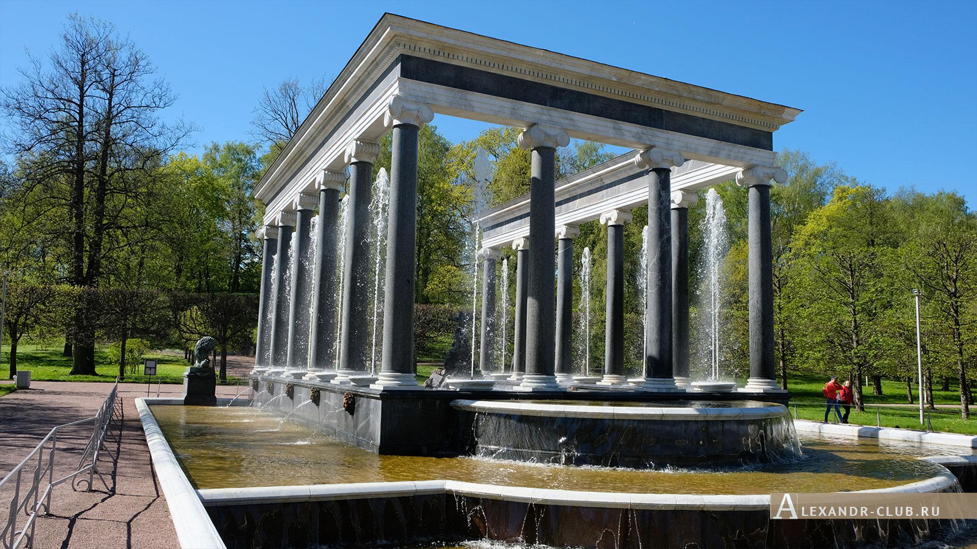 Петергоф, весна, Нижний парк, фонтан «Львиный каскад»