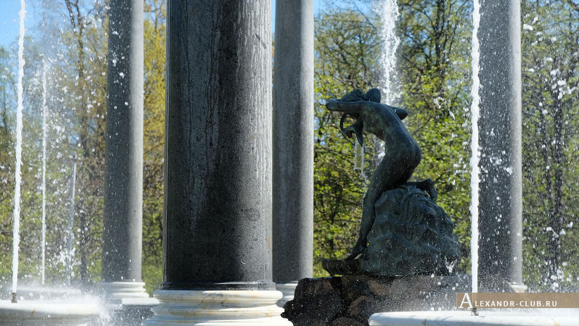 Петергоф, весна, Нижний парк, фонтан «Львиный каскад», нимфа Аганиппа
