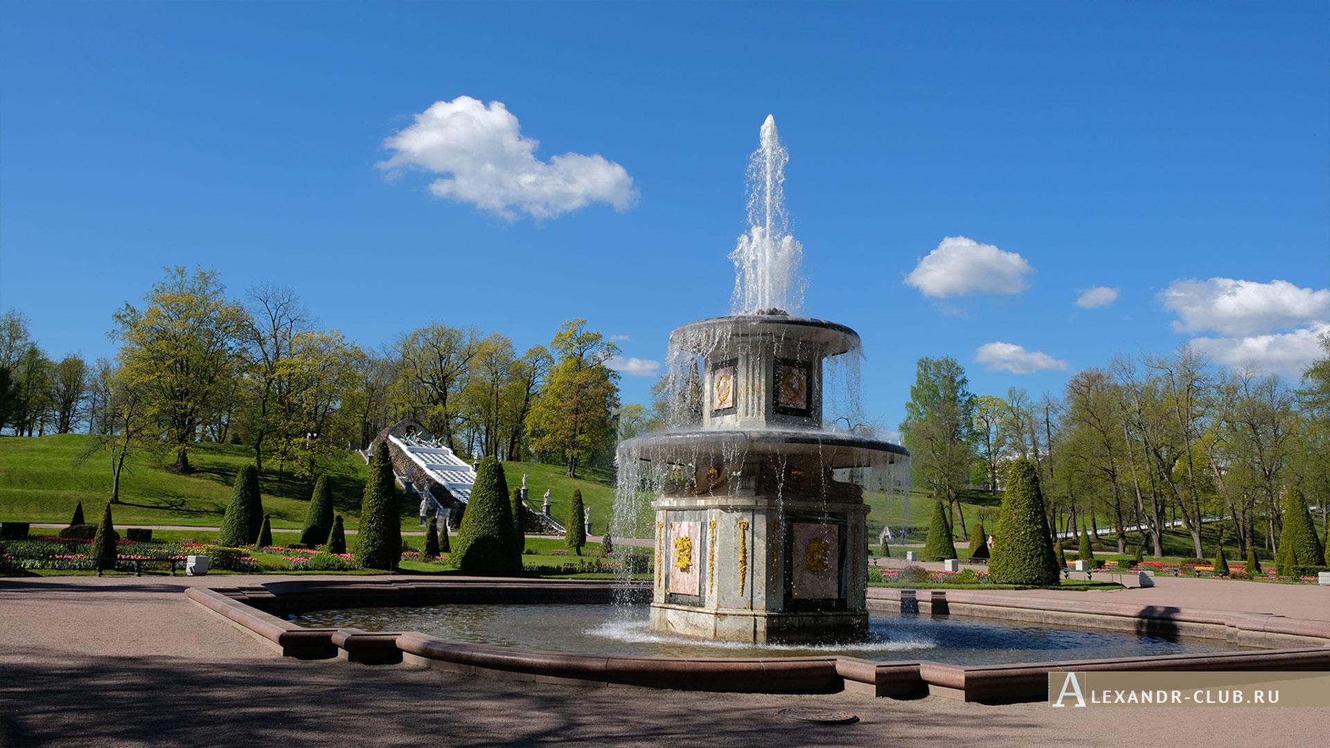Петергоф, весна, Нижний парк, фонтан «Римский»