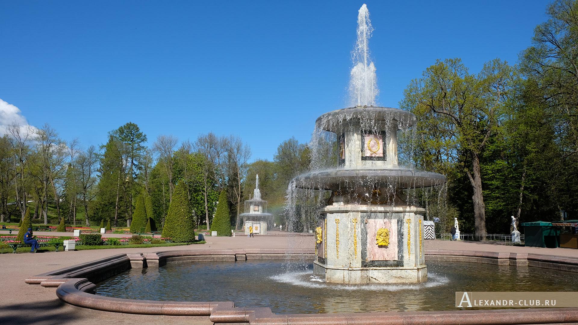 Петергоф, весна, Нижний парк, фонтаны «Римские»