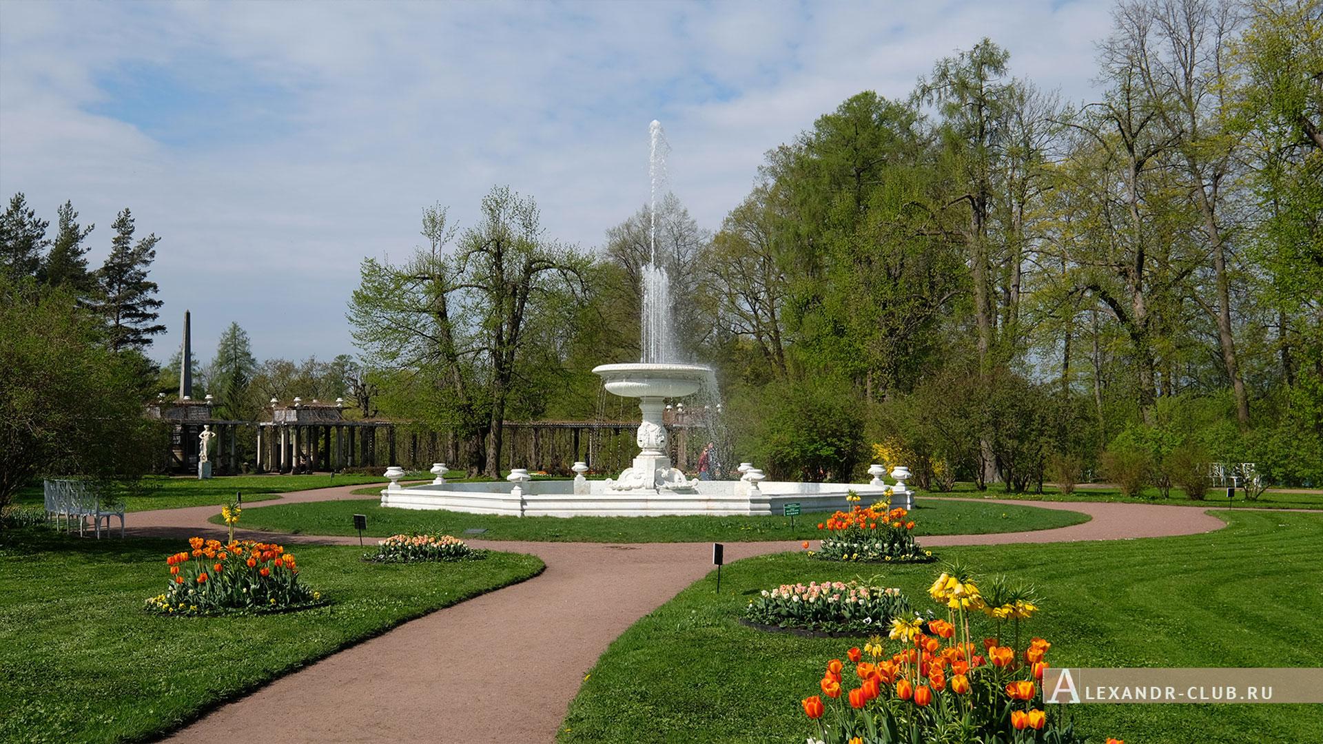 Царское Село, весна, Екатерининский парк, Собственный садик, Фонтан