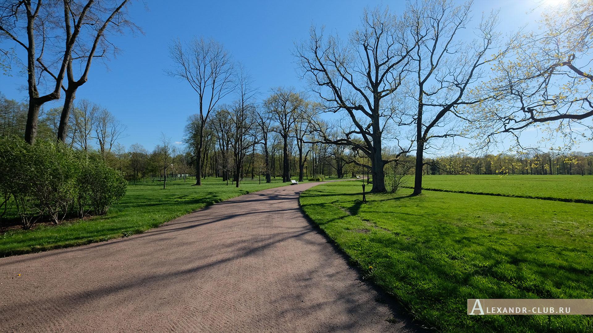 Петергоф, парк «Александрия», весна, пейзаж