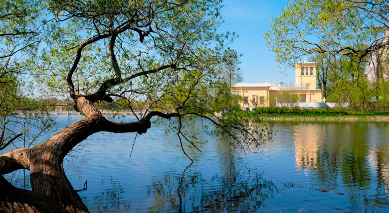 Петергоф, Колонистский парк, Царицын павильон