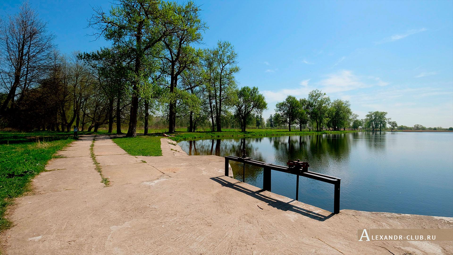Петергоф, Луговой парк, весна, плотина на Бабигонском пруду