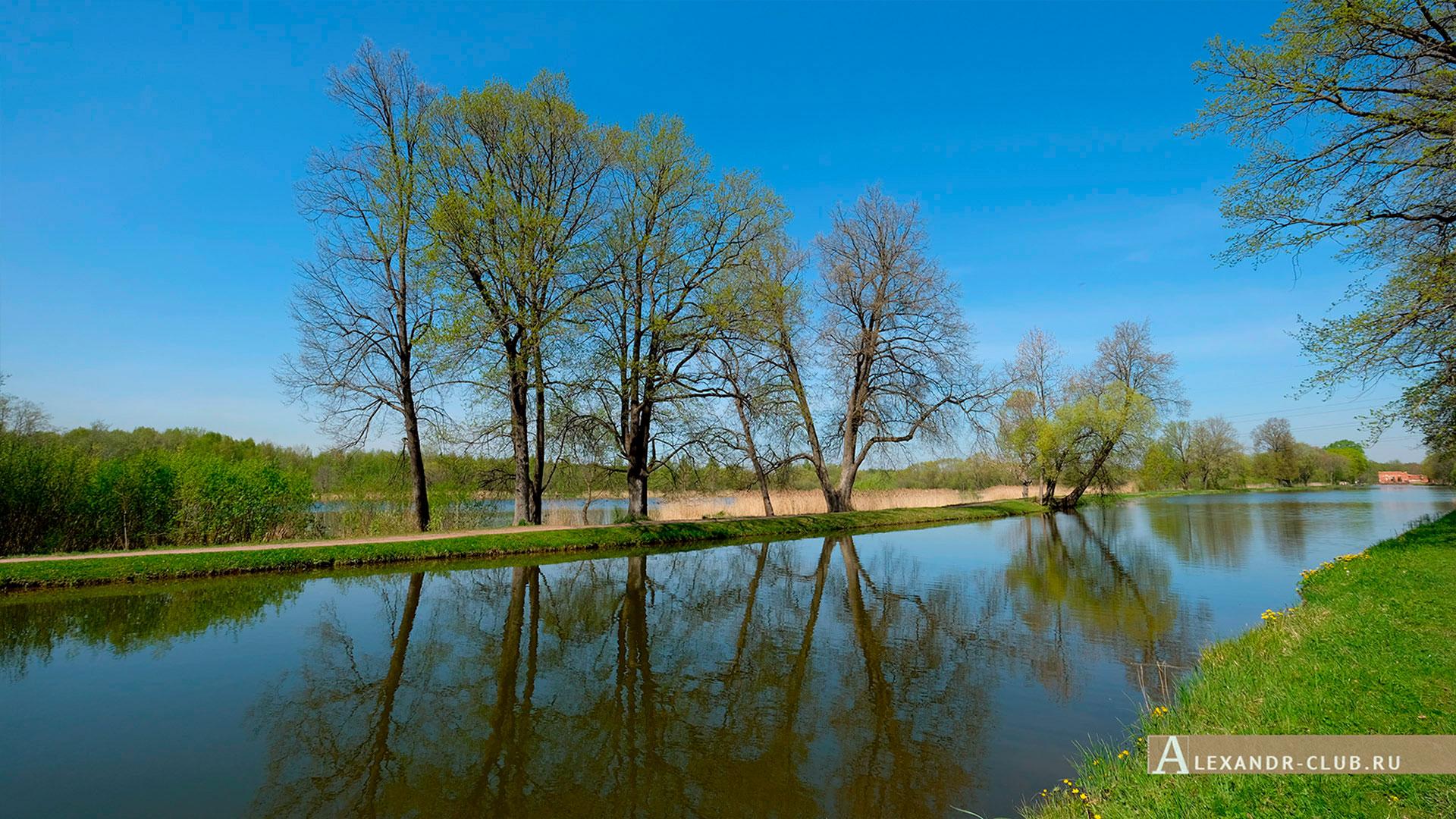 Петергоф, Луговой парк, весна, Старопетергофский канал – 2