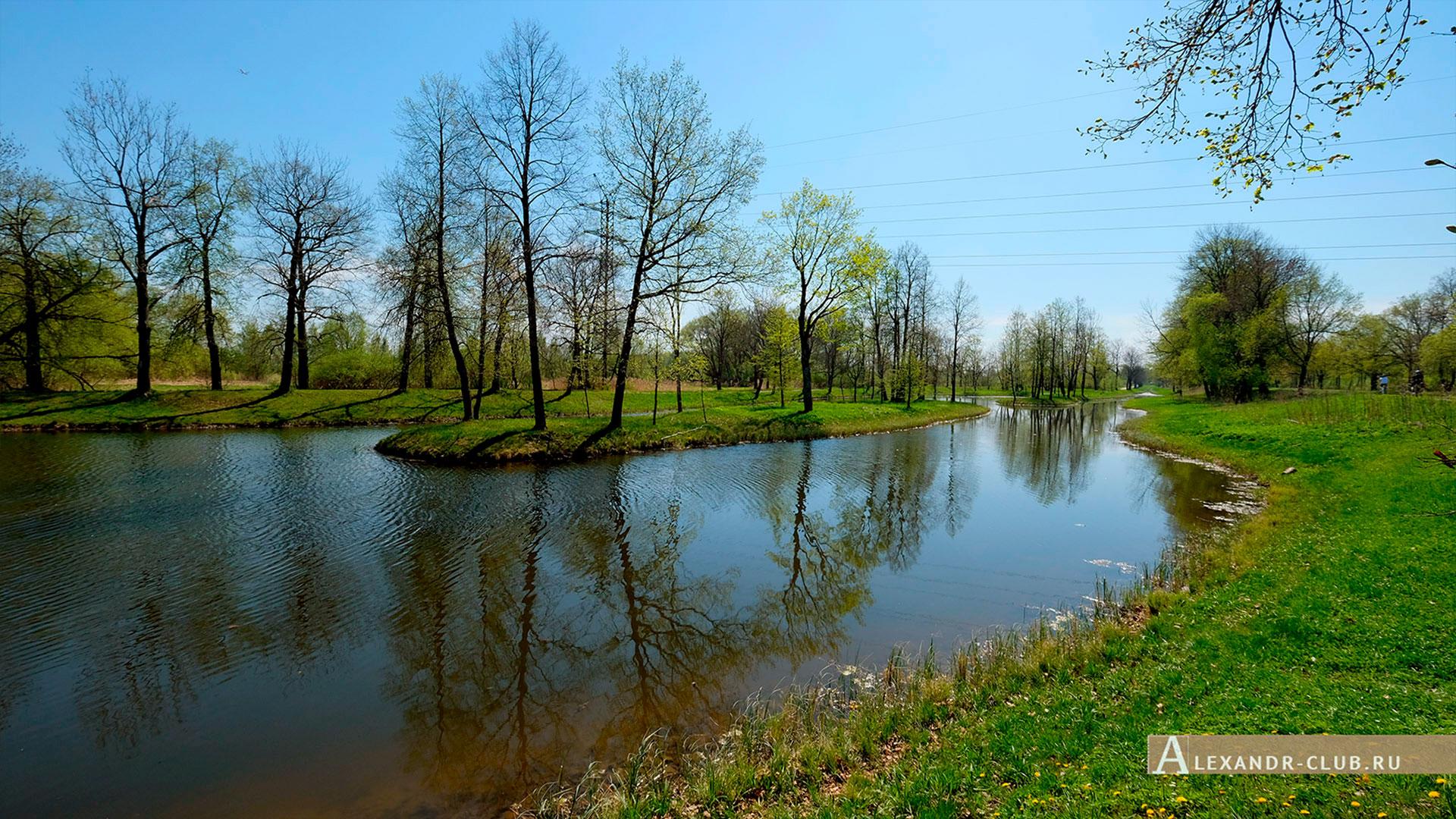 Петергоф, Луговой парк, весна, Мельничный пруд