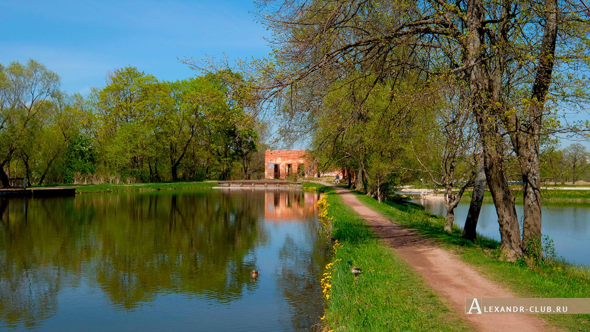 Петергоф, Луговой парк, весна, Старопетергофский канал и Розовый павильон – 3