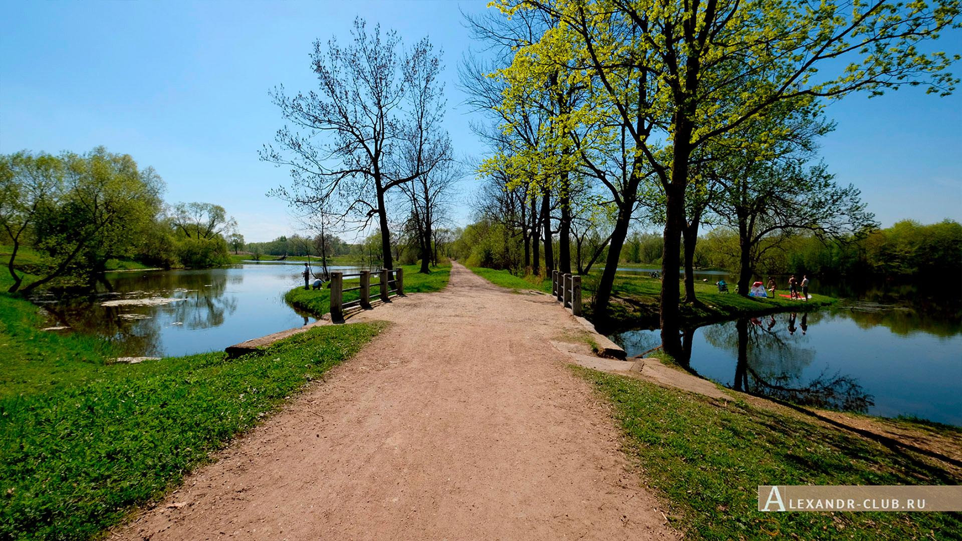 Петергоф, Луговой парк, весна, мостик на Орлинском пруду – 1