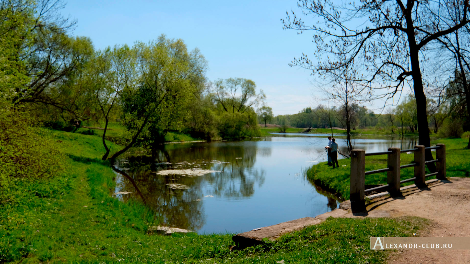 Петергоф, Луговой парк, весна, мостик на Орлинском пруду – 2