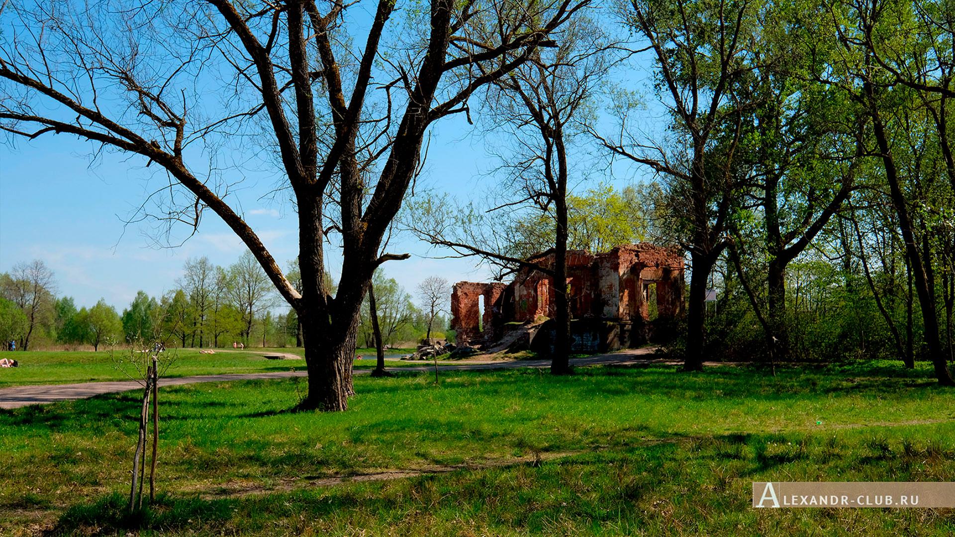Петергоф, Луговой парк, весна, Розовый павильон – 2