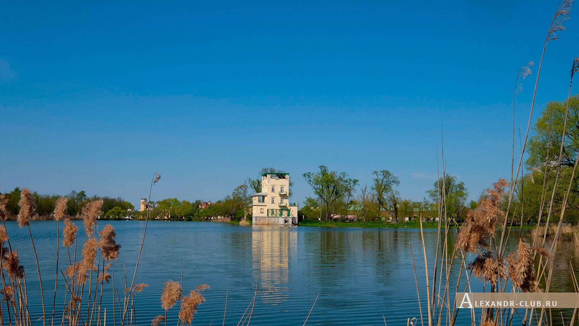 Петергоф, Колонистский парк, весна, Ольгин павильон – 1