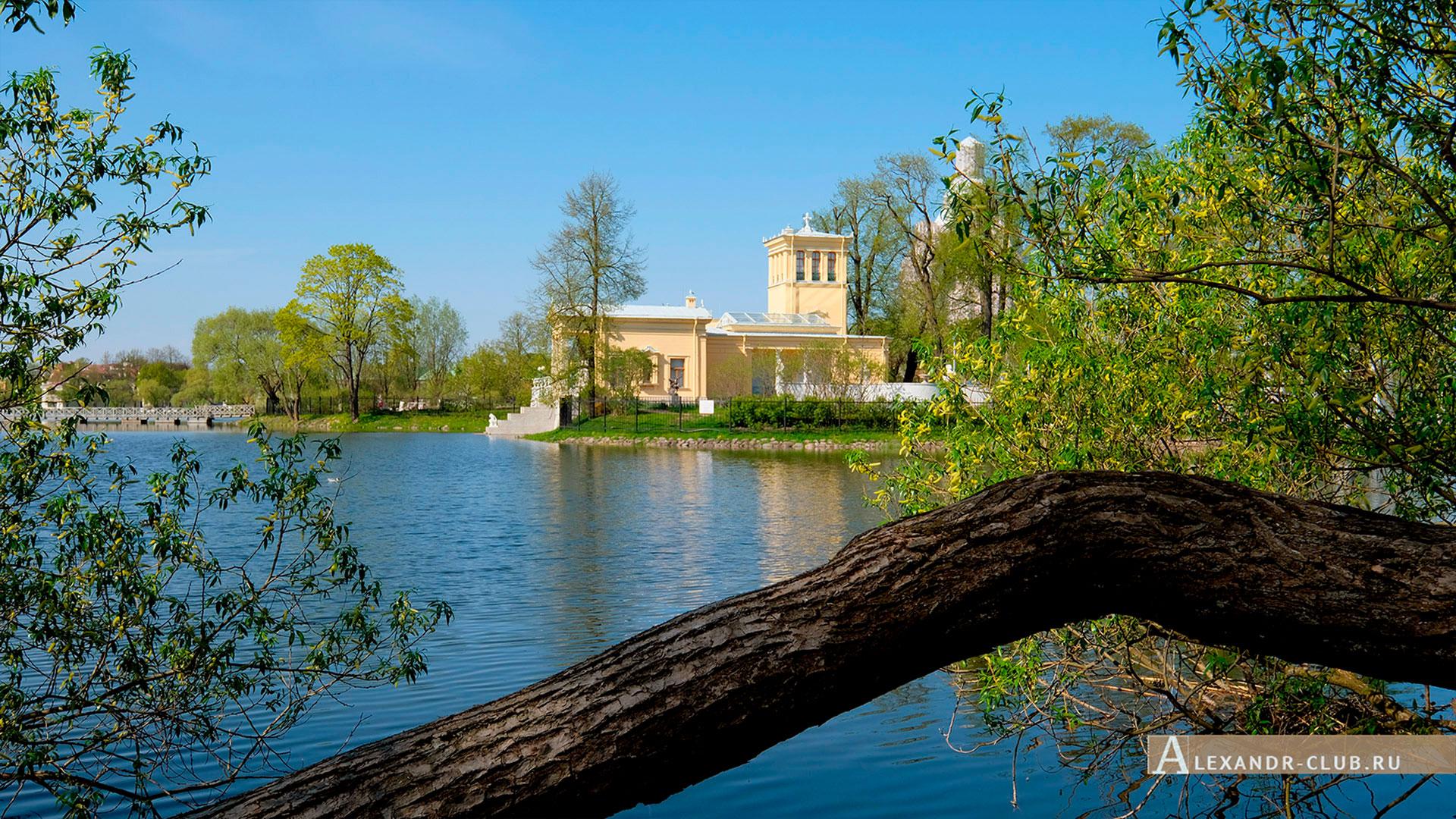 Петергоф, Колонистский парк, весна, Царицын павильон – 2