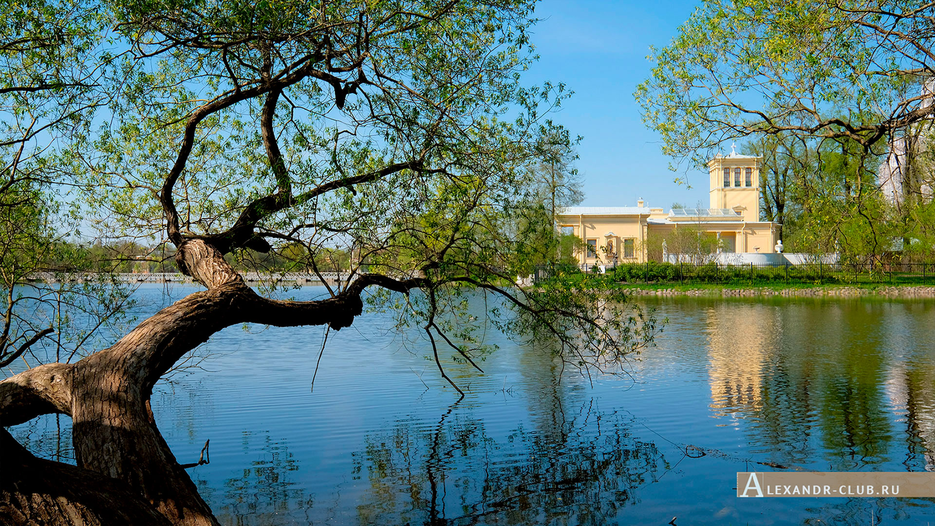 Петергоф, Колонистский парк, весна, Царицын павильон – 3