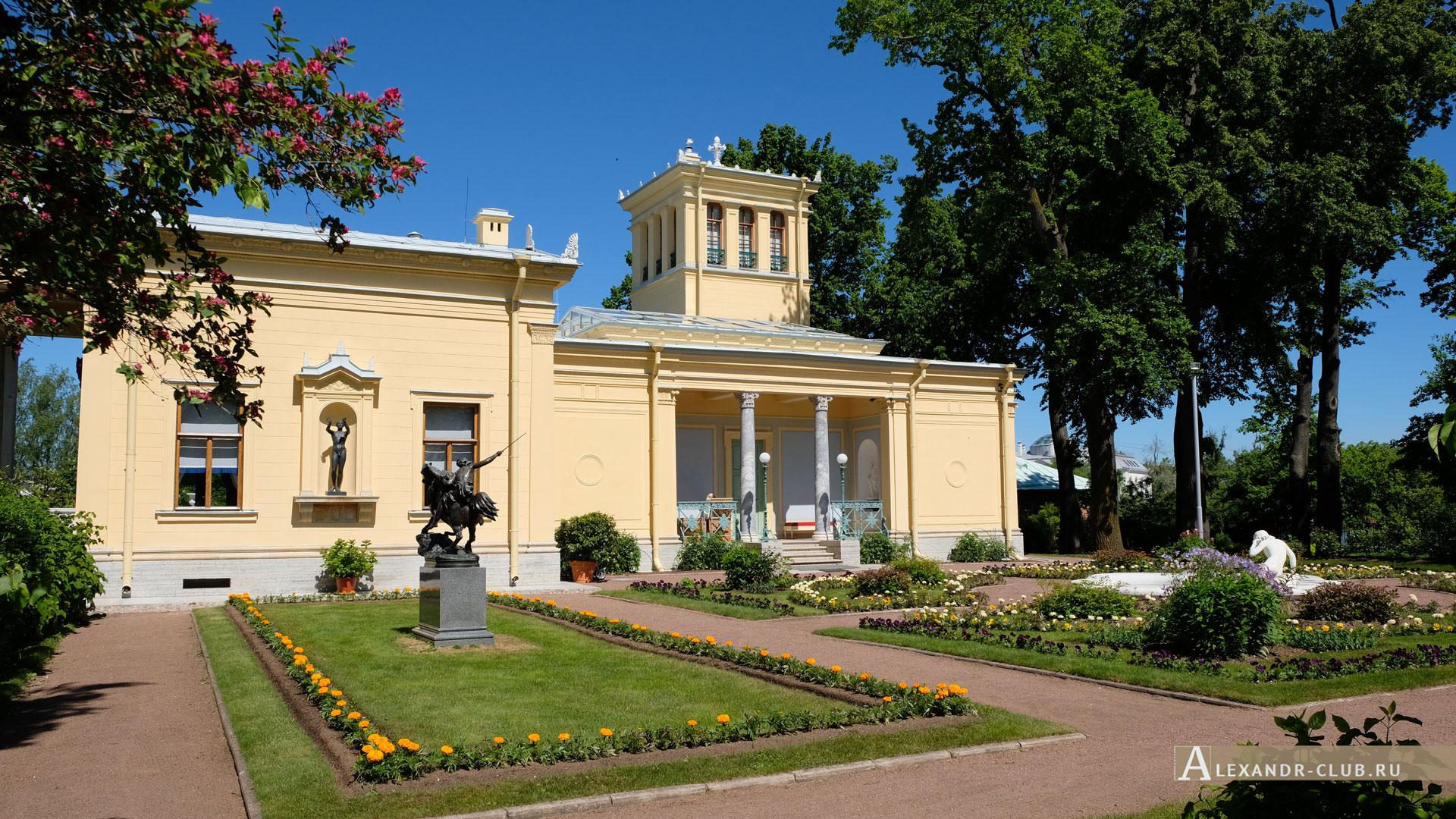 Петергоф, Колонистский парк, лето, Царицын павильон, партерный садик