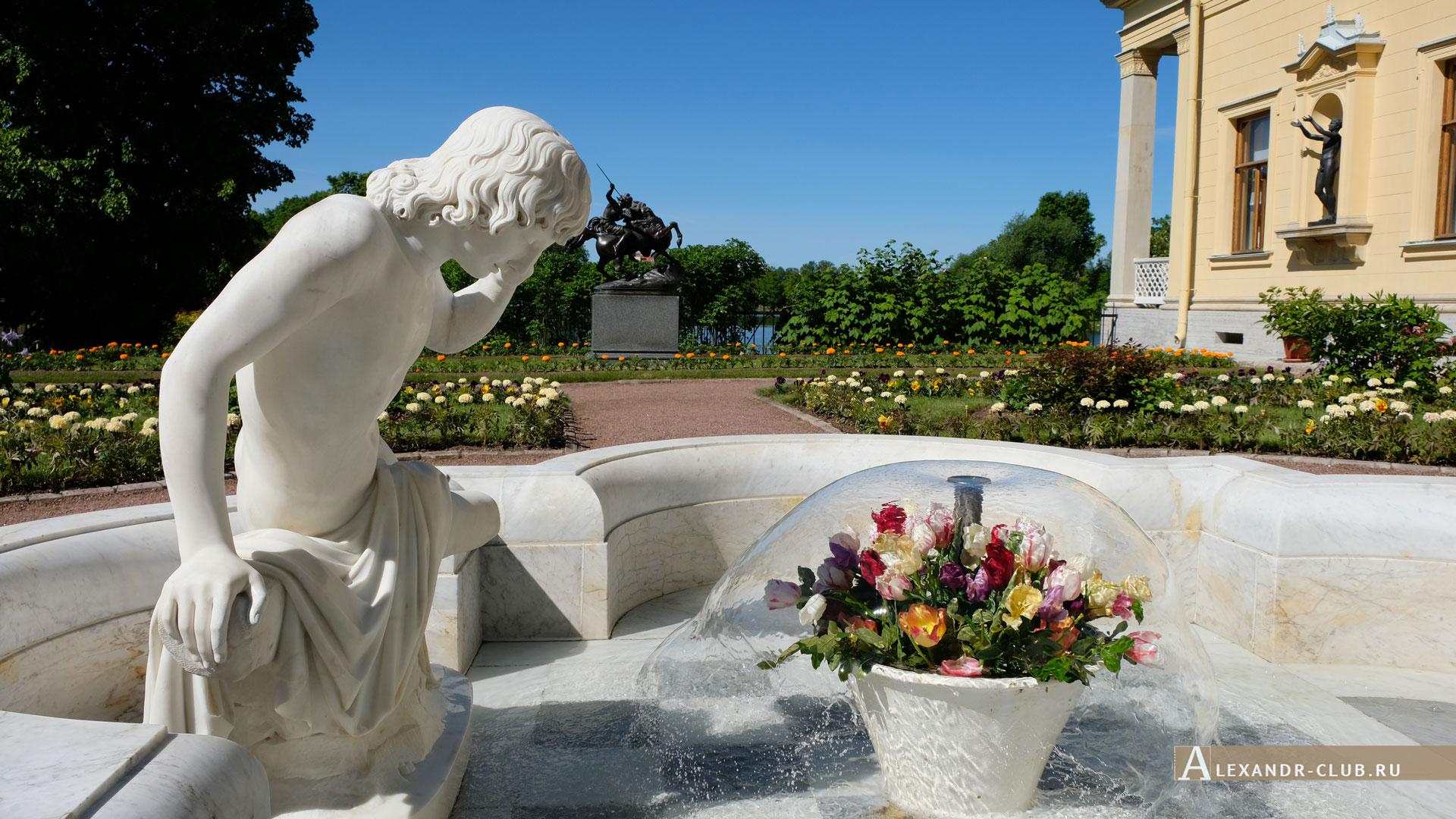 Петергоф, Колонистский парк, лето, Царицын павильон, фонтан «Нарцисс»