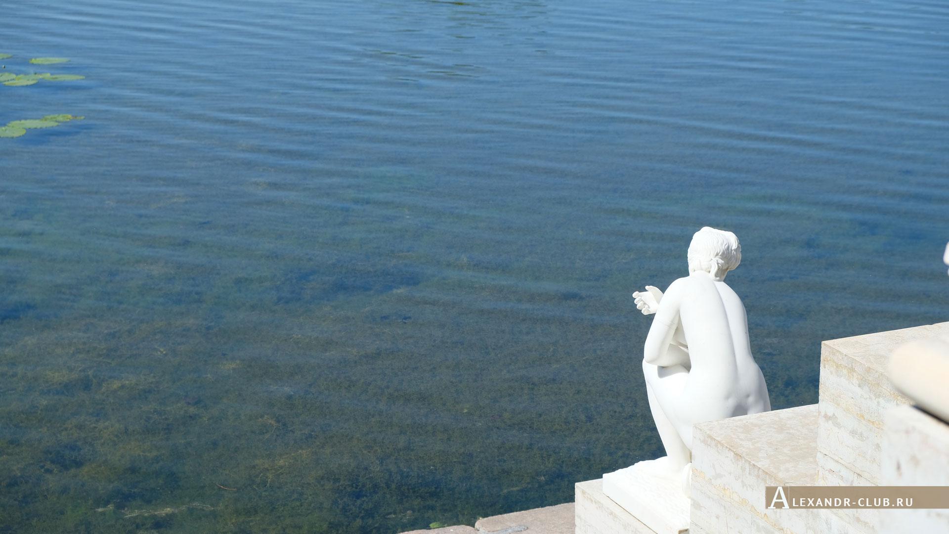 Петергоф, Колонистский парк, лето, Царицын павильон, статуя