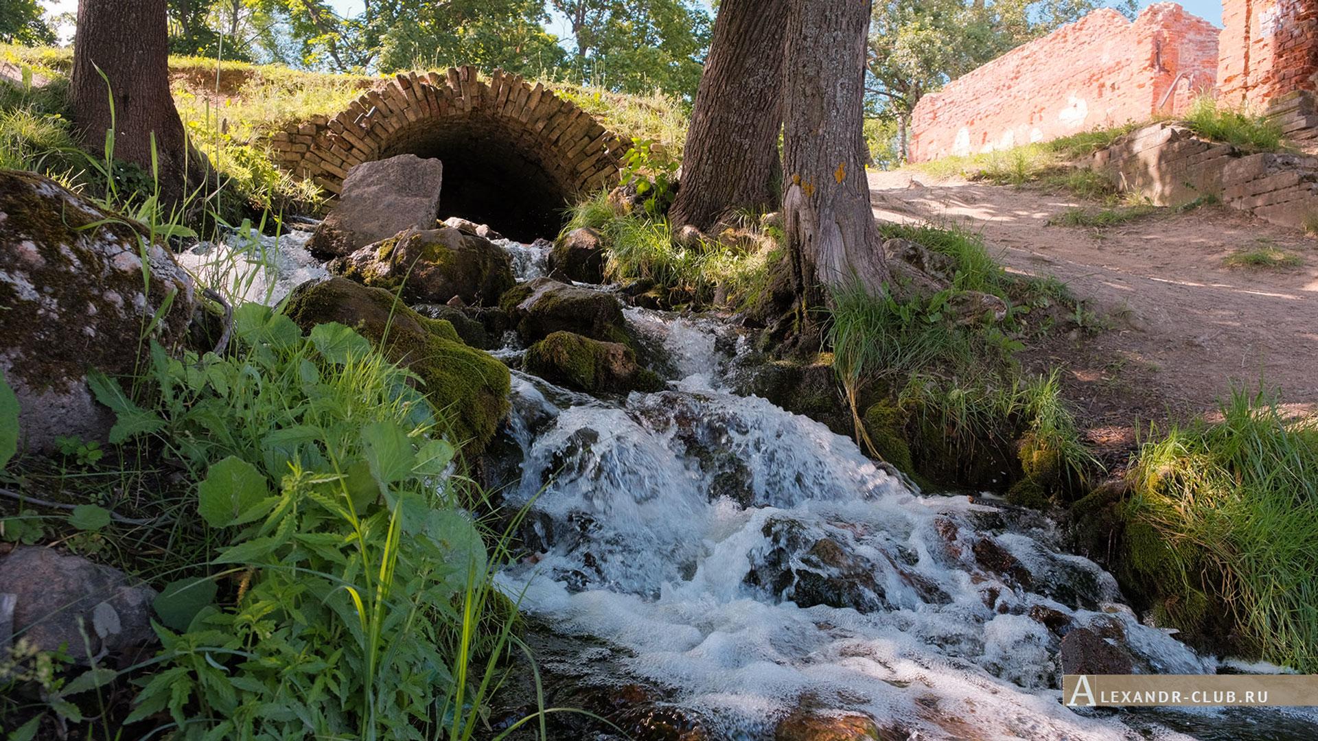 Петергоф, Луговой парк, лето, водопад у Розового павильона