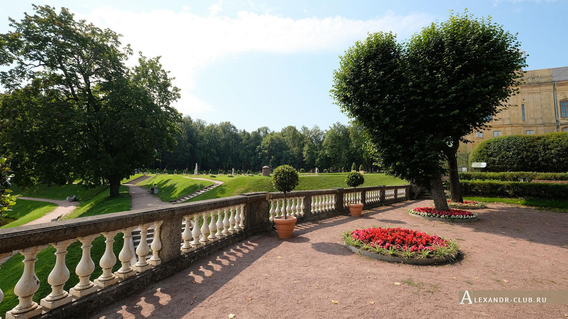 Гатчинский парк, лето, Гатчинский дворец, Собственный садик, Голландский сад