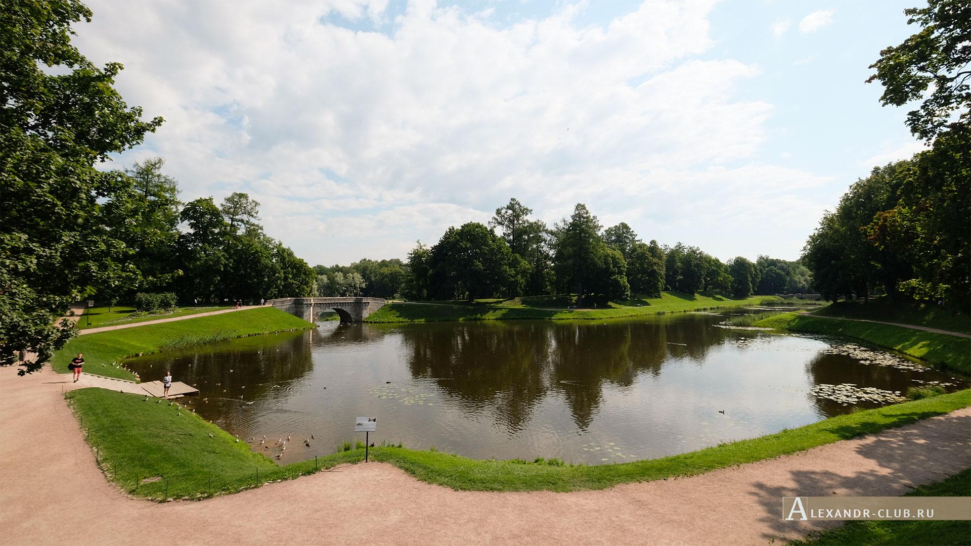 Гатчинский парк, лето, Карпин пруд