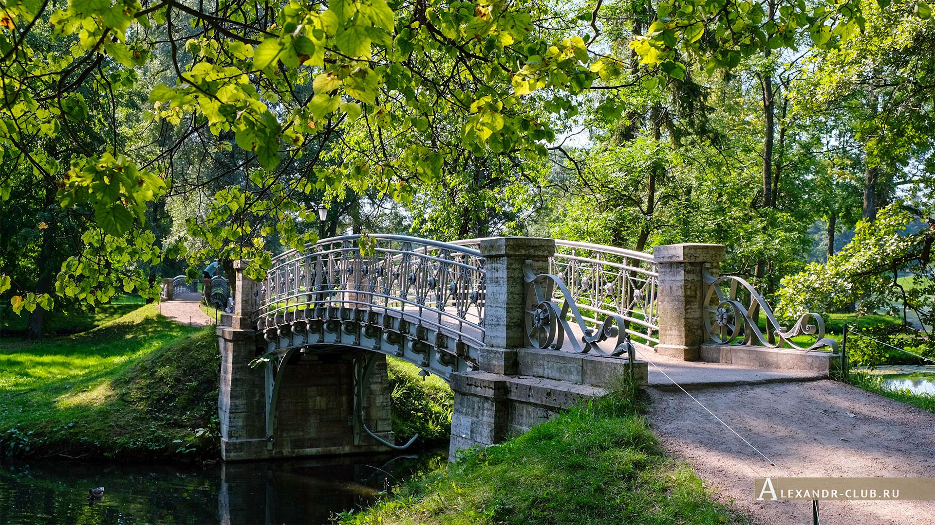 Гатчинский парк, лето, мостик, водный лабиринт