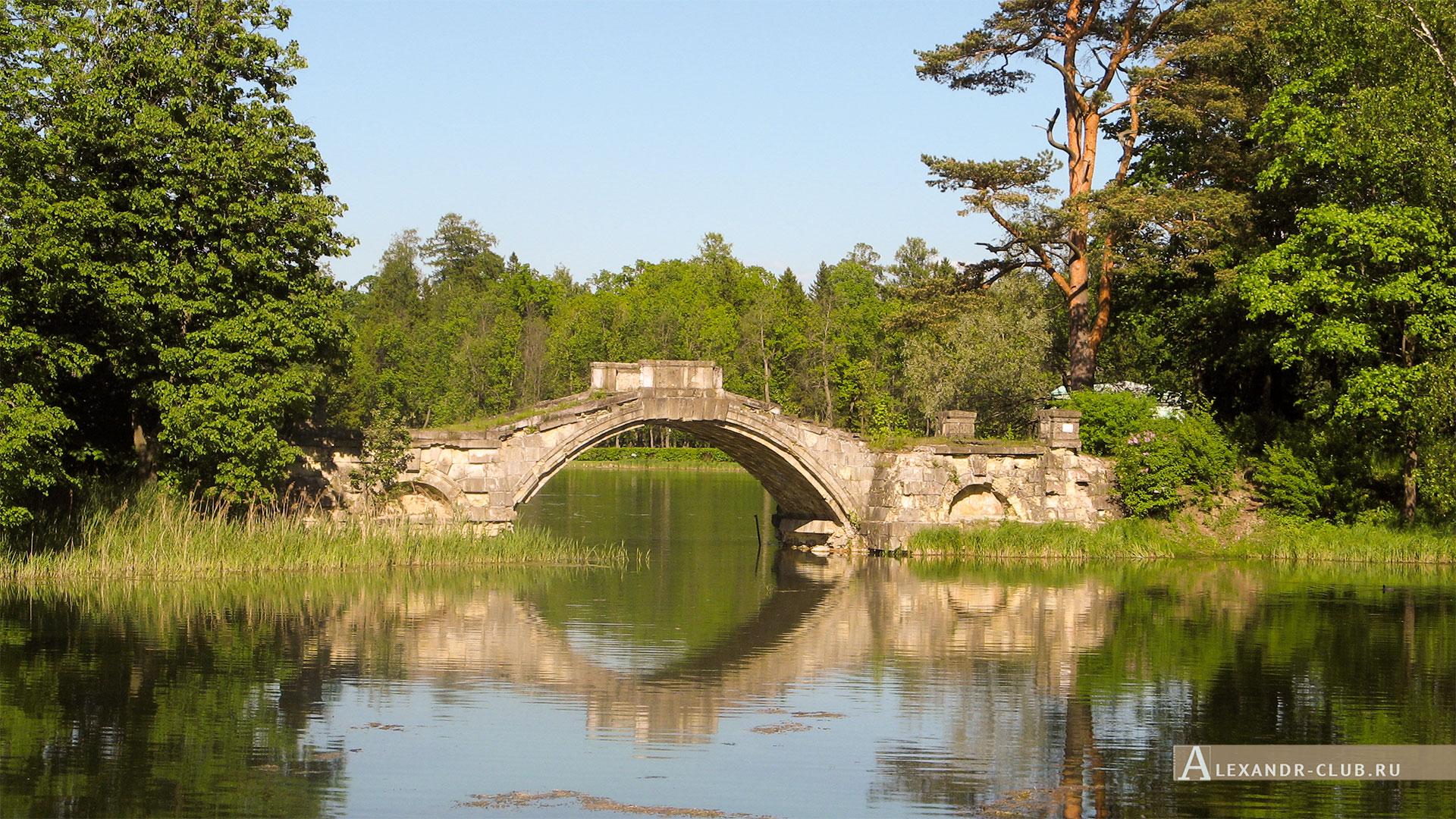 Гатчинский парк, лето, Горбатый мост