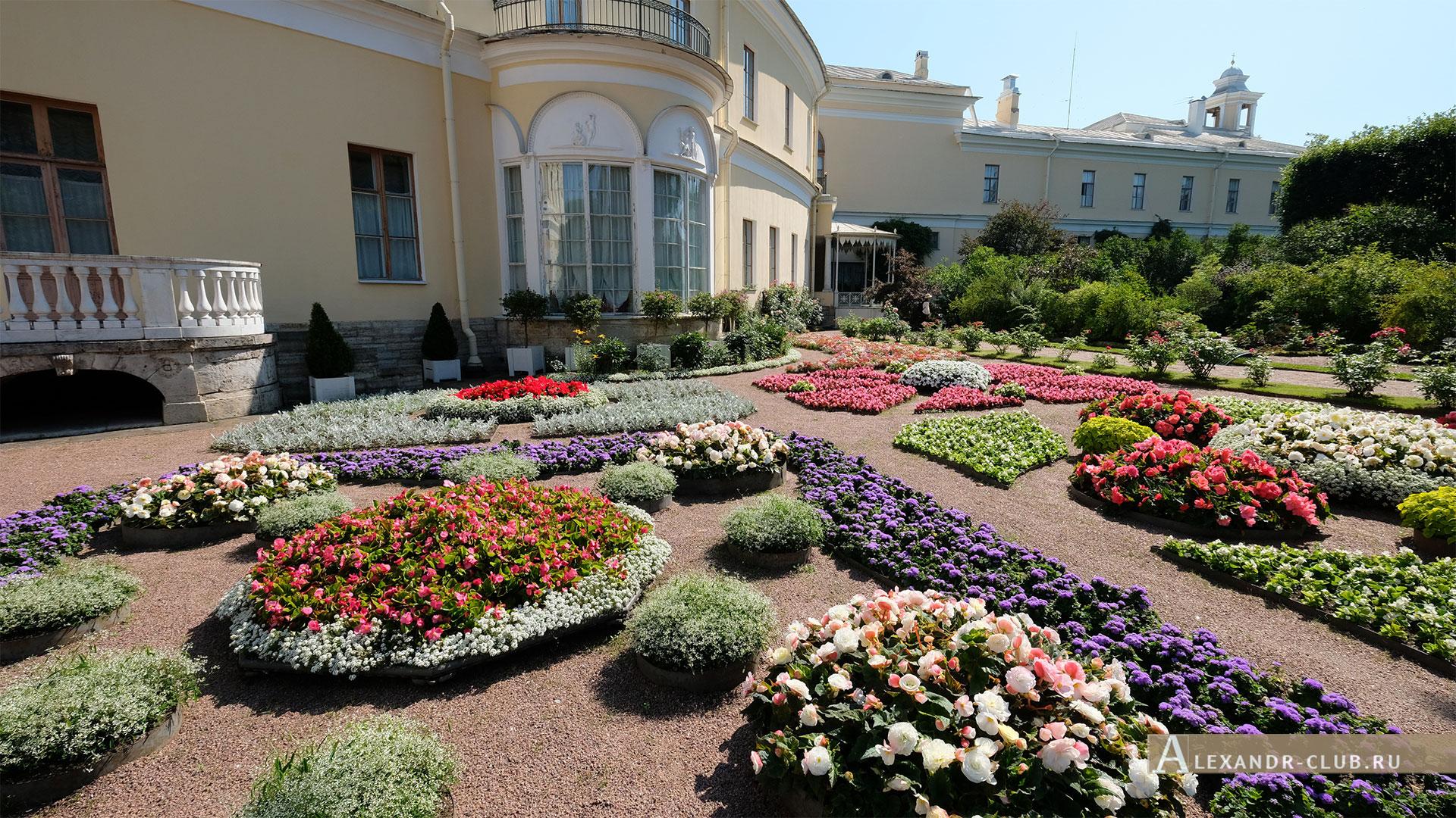 Павловск, лето, Большой Павловский дворец, Собственный садик