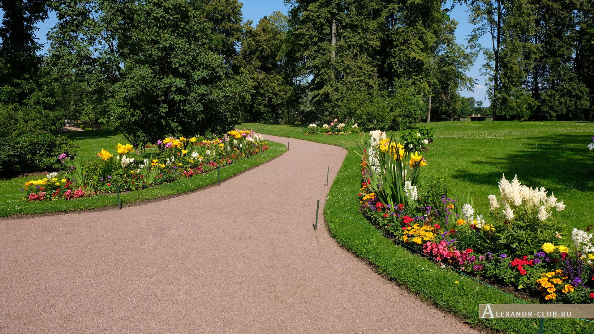 Ораниенбаум, лето, дорога к Дворцу Петра III