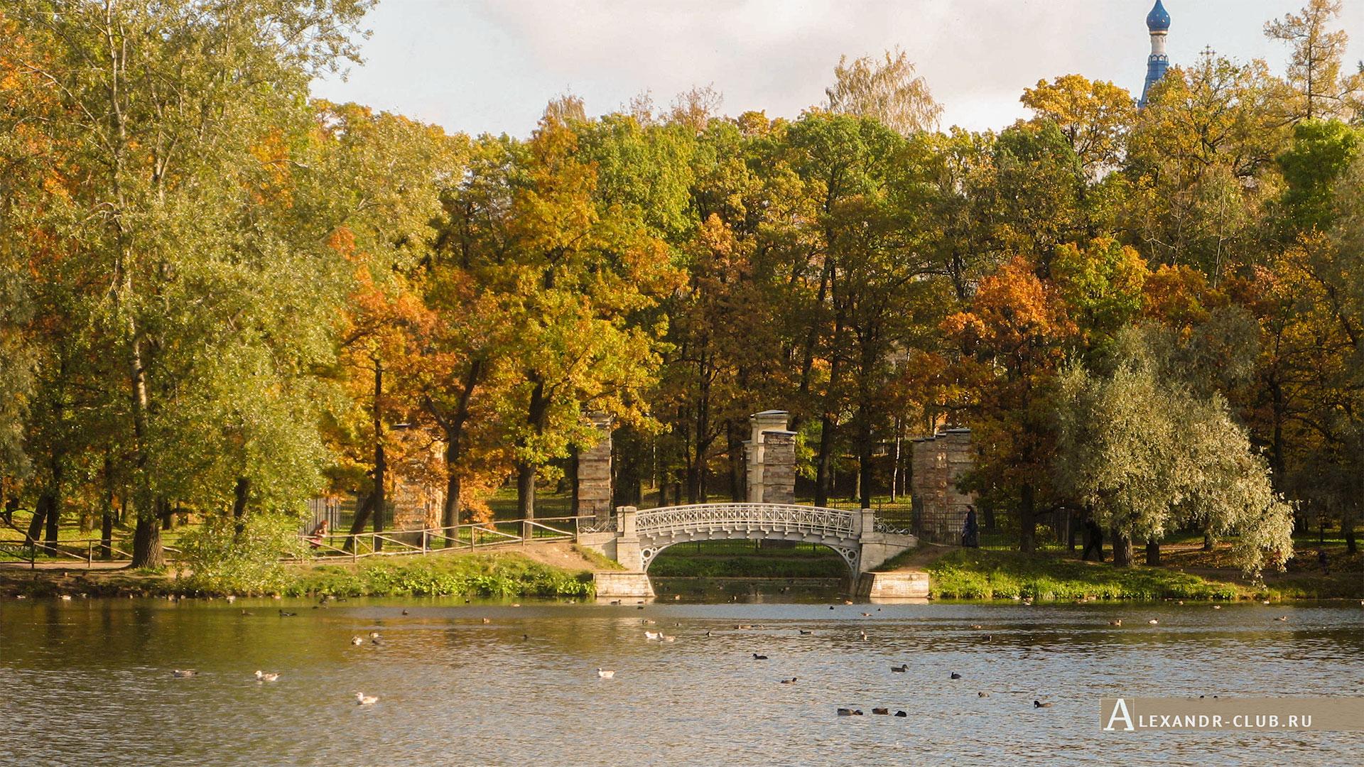 Гатчина, Гатчинский парк, осень, Белое озеро и Адмиралтейство
