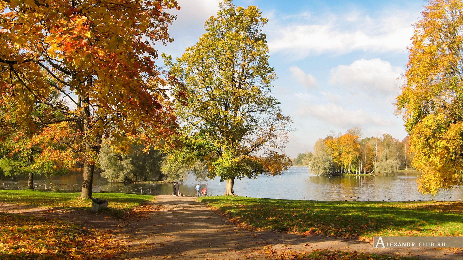Гатчина, Гатчинский парк, осень, берег Белого озера