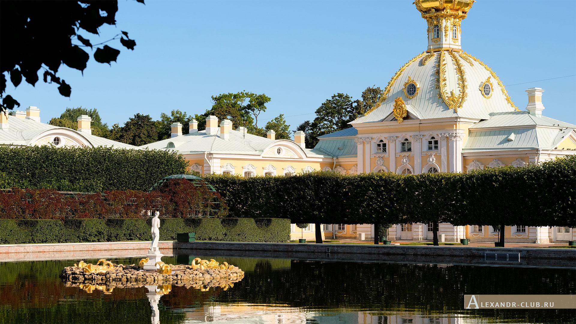 Петергоф, лето, Верхний сад, фонтан «Венера Италийская», Особая кладовая